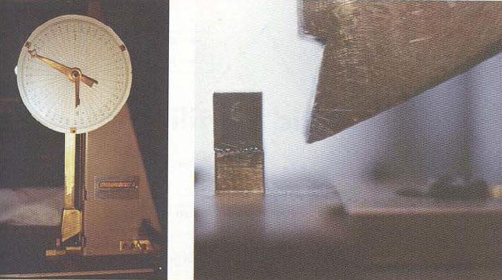 شکل 30: آزمایش پاندول Vialit